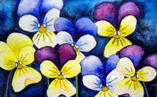 Viola flower painting Johnny Jump Ups watercolor art