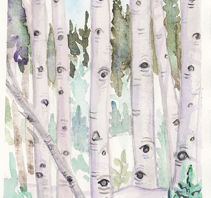 Aspen trees Colorado winter watercolor art fraser