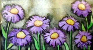 Asters Colorado wildflowers botanical study watercolor painting purple asters thanks for looking flowers