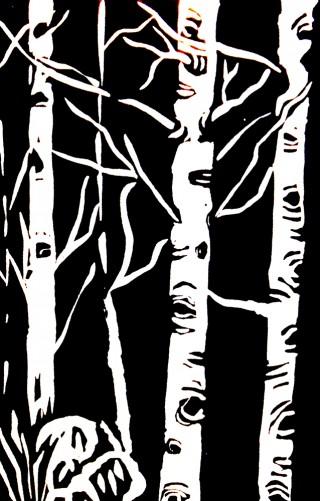 Aspen, black and white art Grand County