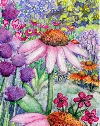 echinacea purpurea, chives, columbine, bleeding heart, pyrethum, dianthus,