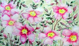 Wild Rose, Colorado Wildflower, watercolor painting, Fraser Colorado
